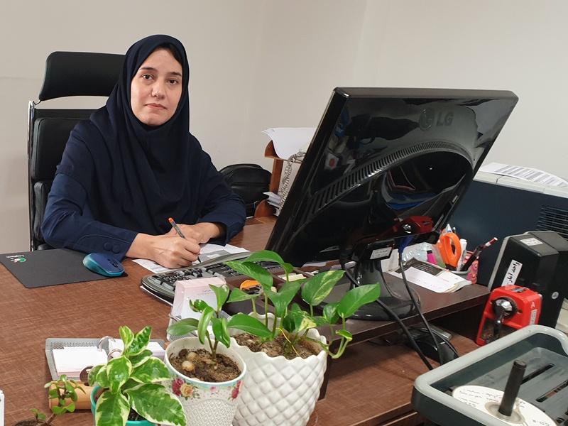 بارگذاری اطلاعات آماری بخش های مختلف شهر رشت بر روی وب سایت گروه آمار و تحلیل اطلاعات شهرداری رشت